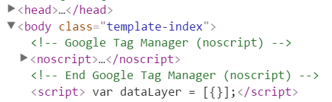 dataLayer after GTM container snippet