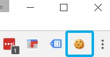 EditThisCookie icon